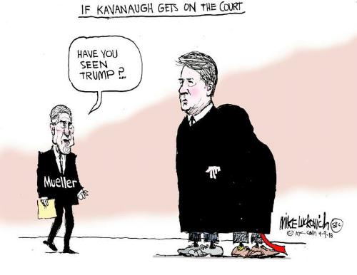 Memes, Trump, and 🤖: IF KAVANAUGH GETS ON THE COURT  HAVE YOU  SEEN  TRUMP P  Mueller