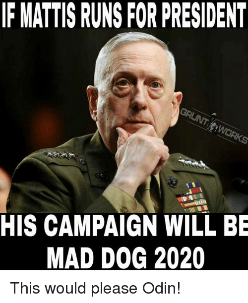 if mattis runs for president his campaign will be mad 8669489 ✅ 25 best memes about odin odin memes,Odin Meme