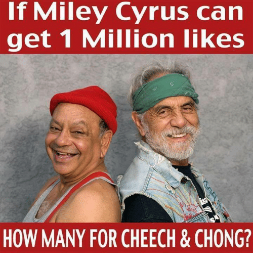 if miley cyrus can get 1 million likes how many 3623568 ✅ 25 best memes about cheech cheech memes