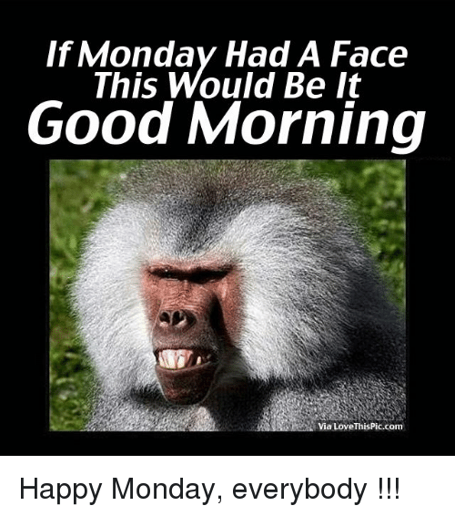 If Monday Had A Face This Would Be It Good Morning Via Love