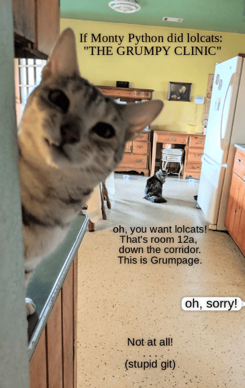 """Sorry, LOLcats, and Python: If Monty Python did lolcats:  """"THE GRUMPY CLINIC""""  oh, you want lolcats!  That's room 12a,  down the corridor.  This is Grumpage.  oh, sorry!  Not at all!  (stupid git)"""