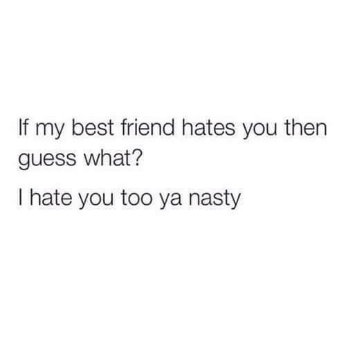 If My Best Friend Hates You Then Guess What I Hate You Too Ya Nasty