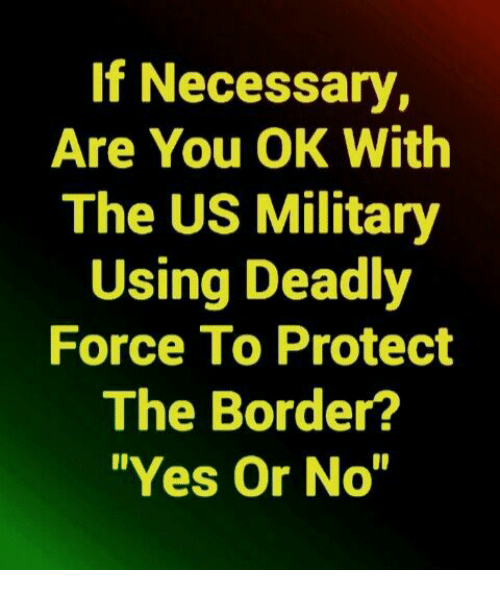 "Memes, Military, and 🤖: If Necessary,  Are You OK With  The US Military  Using Deadly  Force To Protect  The Border?  ""Yes Or No"