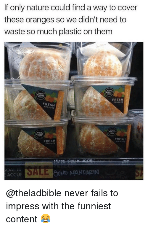 Fresh, Meme, and Memes: If only nature could find a way to cover  these oranges so we didn't need to  waste so much plastic on them  RIGHT  MEME  RIGHT  FRESH  PRODUCE  FRESH  MAN  RIGHT  MADE  RIGHT  FRESH  FRESH  SALE MANDARIN  ACCU @theladbible never fails to impress with the funniest content 😂