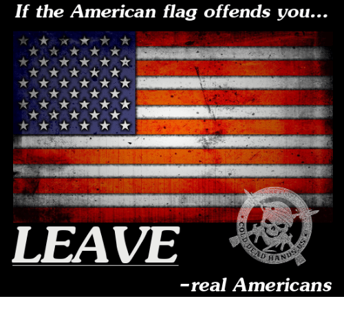 if-the-american-flag-offends-you-leave-h
