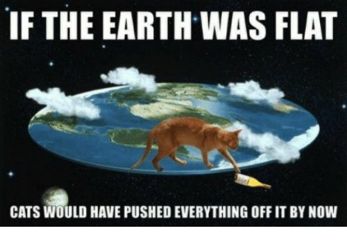 if-the-earth-was-flat-cats-would-have-pushed-everything-28701311.png
