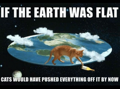 Cats, Memes, and Earth: IF THE EARTH WAS FLAT  CATS WOULD HAVE PUSHED EVERYTHING OFF IT BY NOW