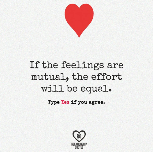 If the Feelings Are Mutual the Effort Will Be Equal Type Yes ...