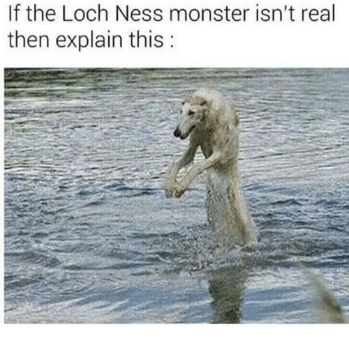 Loch Ness Monster, Memes, and Monster: If the Loch Ness monster isn't real  then explain this:
