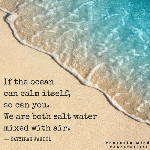 Memes, Ocean, and Water: If the ocean  can calm itself,  so can you.  We are both salt water  mixed with air.  NAYYIRAH WAHEED  #PeacefulMind  Pe a cefulLife