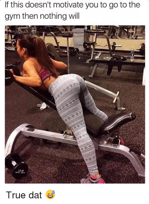Gym, Memes, and True: If this doesn't motivate youto go to the  gym then nothing will True dat 😅