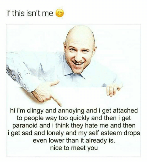 Memes, Sad, and Hate Me: if this isn't me  hi i'm clingy and annoying and i get attached  to people way too quickly and then i get  paranoid and i think they hate me and then  i get sad and lonely and my self esteem drops  even lower than it already is.  nice to meet you