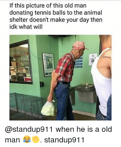 Memes, Old Man, and Animal: If this picture of this old man  donating tennis balls to the animal  shelter doesn't make your day then  idk what will @standup911 when he is a old man 😂✊️. standup911