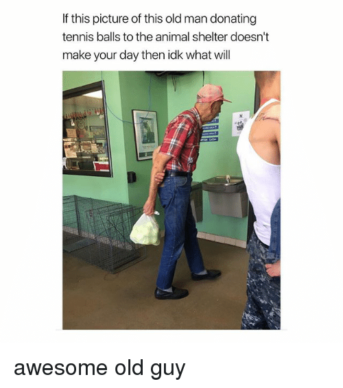 Old Man, Animal, and Animal Shelter: If this picture of this old man donating  tennis balls to the animal shelter doesn't  make your day then idk what will awesome old guy