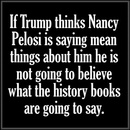 Books, History, and Mean: If Trump thinks Nancy  Pelosi is sayıng mean  things about him he is  not going to believe  what the history books  are going to say.