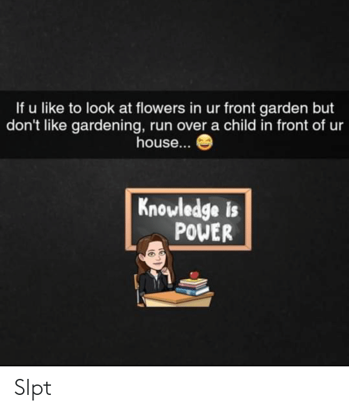 Run, Flowers, and House: If u like to look at flowers in ur front garden but  don't like gardening, run over a child in front of ur  house...  Knowledge is  POWER Slpt