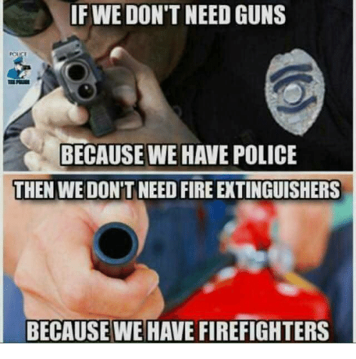 Fire, Guns, and Memes: IF WE DON'T NEED GUNS  BECAUSE WE HAVE POLICE  THEN WE DON'T NEED FIRE EXTINGUISHERS  BECAUSEWE HAVE FIREFIGHTERS