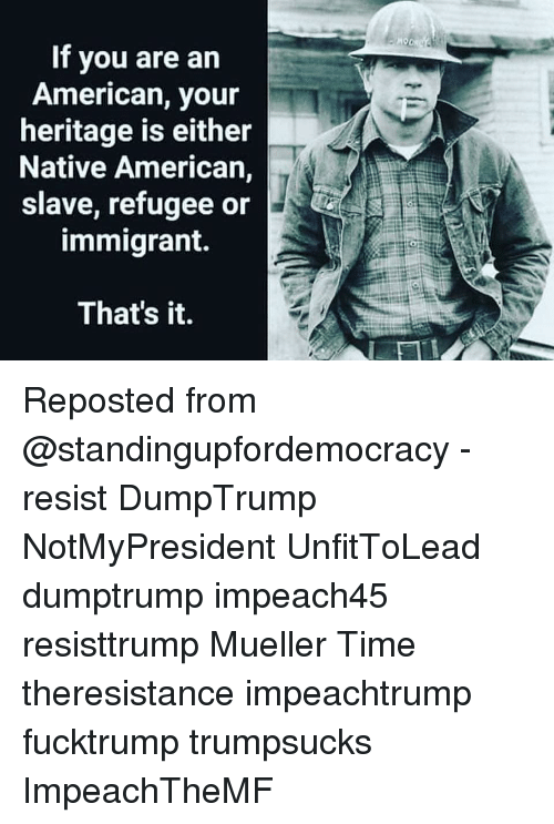 Memes, Native American, and American: If you are an  American, your  heritage is either  Native American,  slave, refugee or  immigrant.  That's it. Reposted from @standingupfordemocracy - resist DumpTrump NotMyPresident UnfitToLead dumptrump impeach45 resisttrump Mueller Time theresistance impeachtrump fucktrump trumpsucks ImpeachTheMF