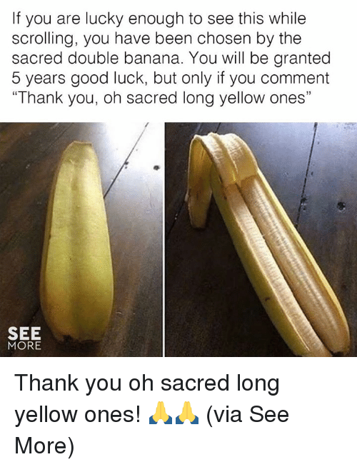 "Memes, Thank You, and Banana: If you are lucky enough to see this while  scrolling, you have been chosen by the  sacred double banana. You will be granted  5 years good luck, but only if you comment  ""Thank you, oh sacred long yellow ones""  SEE  MORE Thank you oh sacred long yellow ones! 🙏🙏  (via See More)"