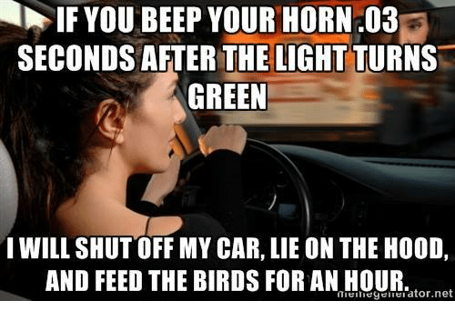 Memes, Birds, and The Birds: IF YOU BEEP YOUR HORN.03  SECONDS AFTER THE LIGHT TURNS  GREEN  I WILL SHUT OFF MY CAR, LIE ON THE H00D,  AND FEED THE BIRDS FOR AN HOUR  net  Erator