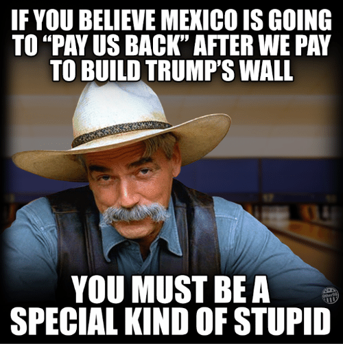 if you believe mexico isgoing to pay us back after 10938701 ✅ 25 best memes about a special kind of stupid a special kind,Stupid Memes