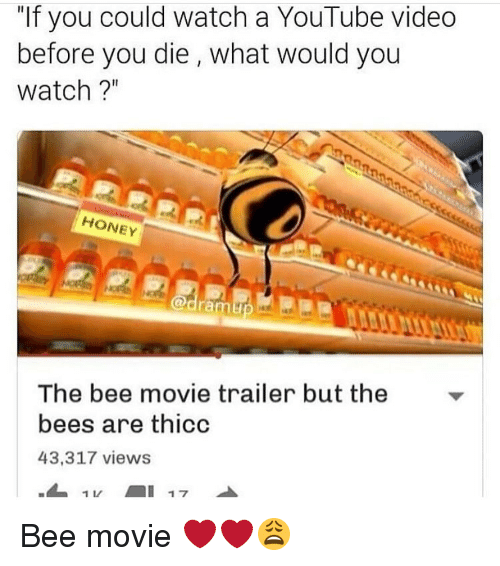 Bee Movie Memes And Youtube Videos If You Could Watch A YouTube