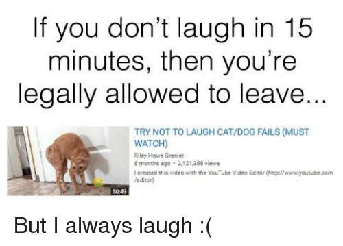 Laugh In