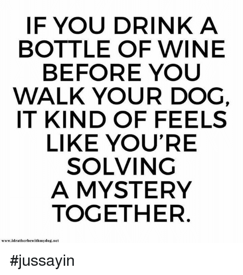 Dank, Wine, and Mystery: IF YOU DRINK A  BOTTLE OF WINE  BEFORE YOU  WALK YOUR DOG,  IT KIND OF FEELS  LIKE YOU'RE  SOLVING  A MYSTERY  TOGETHER  www.idratherbewithmydod.net #jussayin