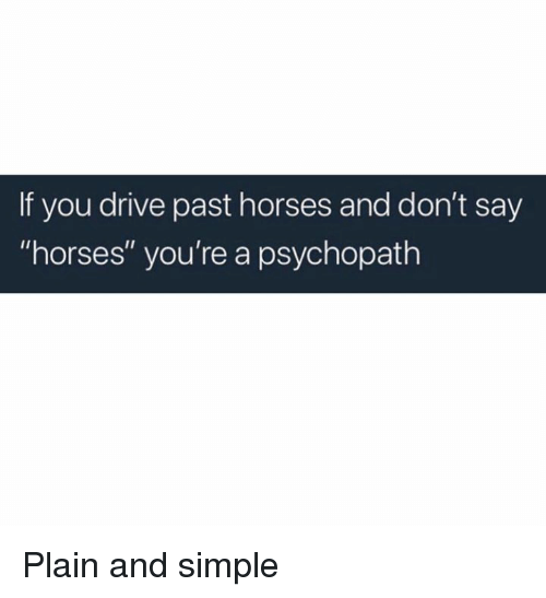 "Horses, Memes, and Drive: If you drive past horses and don't say  ""horses"" you're a psychopath Plain and simple"