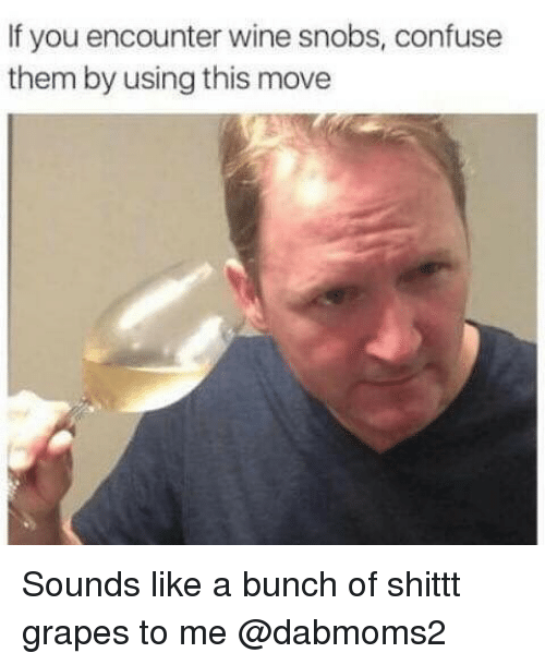 Wine, Dank Memes, and Grapes: If you encounter wine snobs, confuse  them by using this move Sounds like a bunch of shittt grapes to me @dabmoms2