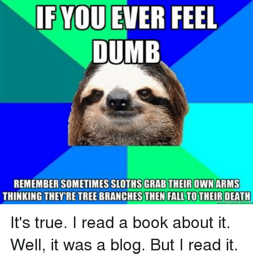 1e966dfa4 If YOU EVER FEEL DUMB REMEMBER SOMETIMES SLOTHSGRABTHEIR OWN ARMS ...