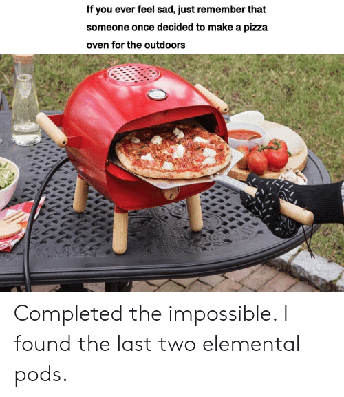 Pizza, Dank Memes, and Sad: If you ever feel sad, just remember that  someone once decided to make a pizza  oven for the outdoors Completed the impossible. I found the last two elemental pods.