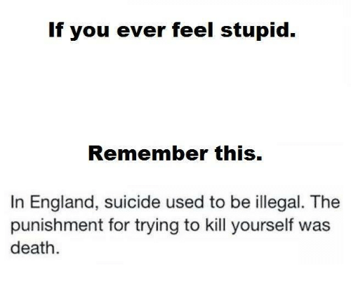 If You Ever Feel Stupid