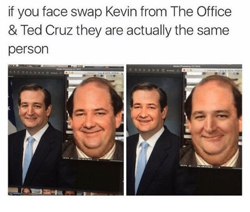 Memes, Ted, and Ted Cruz: if you face swap Kevin from The Office  & Ted Cruz they are actually the same  person