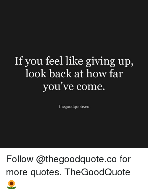 When You Feel Like Giving Up Quotes If You Feel Like Giving Up Look Back at How Far You Ve Come  When You Feel Like Giving Up Quotes