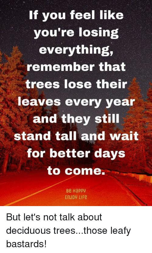 Life, Happy, and Trees: If you feel like  you're losing  everything,  remember that  trees lose their  eaves every year  and they still  stand tall and wait  for better days  to come.  Be Happy  EnJOY LIFe