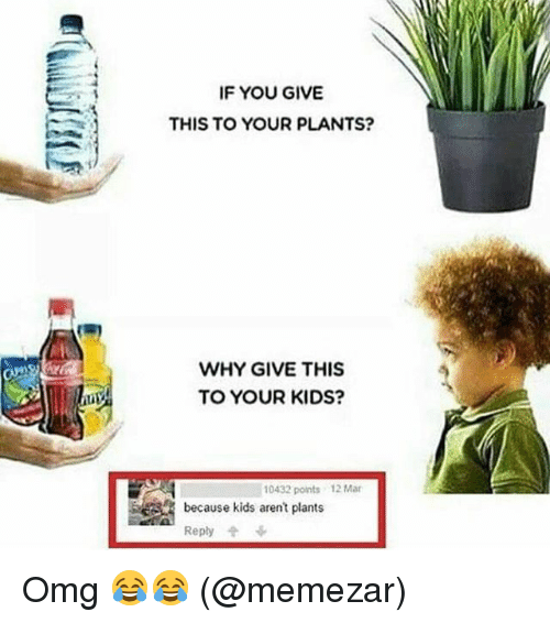 Memes, Omg, and Kids: IF YOU GIVE  -1  THIS TO YOUR PLANTS?  WHY GIVE THIS  TO YOUR KIDS?  10432 points 12 Mar  because kids arent plants  Reply Omg 😂😂 (@memezar)