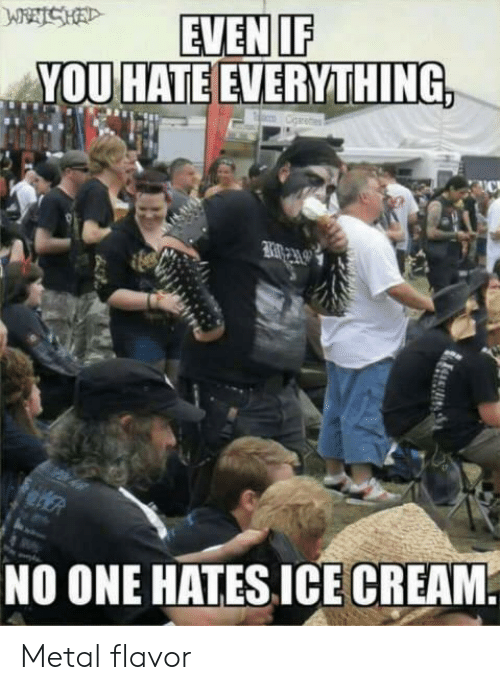 Metal, One, and You: IF  YOU HATE EVERYTHING  NO ONE HATES ICECREAM Metal flavor