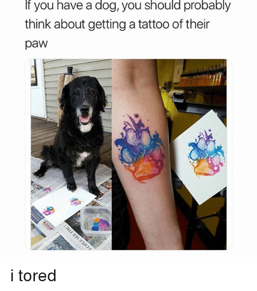 Memes, Tattoo, and 🤖: If you have a dog, you should probably  think about getting a tattoo of their  paw i tored