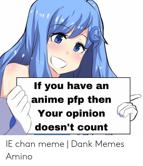 If You Have An Anime Pfp Then Your Opinion Doesn T Count Ie Chan