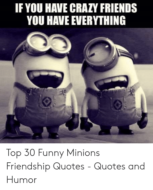if you have crazy friends you have everything top funny minions