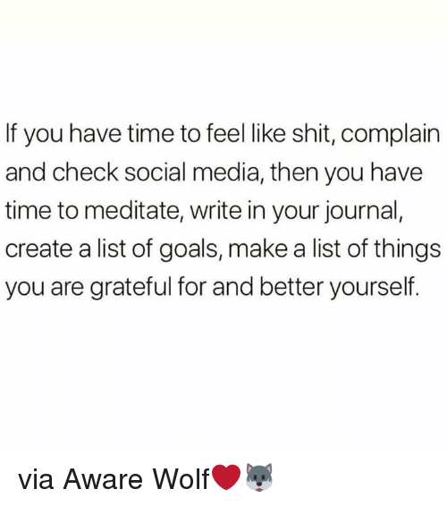 Goals, Shit, and Social Media: If you have time to feel like shit, complain  and check social media, then you have  time to meditate, write in your journal,  create a list of goals, make a list of things  you are grateful for and better yourself. via Aware Wolf❤️🐺