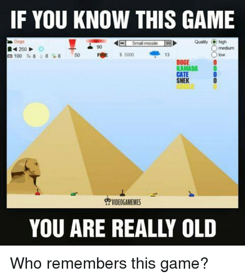 Doge, Memes, and Old: IF YOU KNOW THIS GAME  1991 Qualty high  Smal missile  250 O  5000 13  8 +8  EE 100 8  DOGE  KAMADA  SNEK  VIDEOGAME MES  YOU ARE REALLY OLD Who remembers this game?