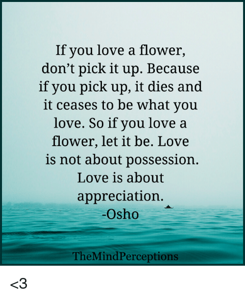 If You Love A Flower Dont Pick It Up Because If You Pick Up It Dies