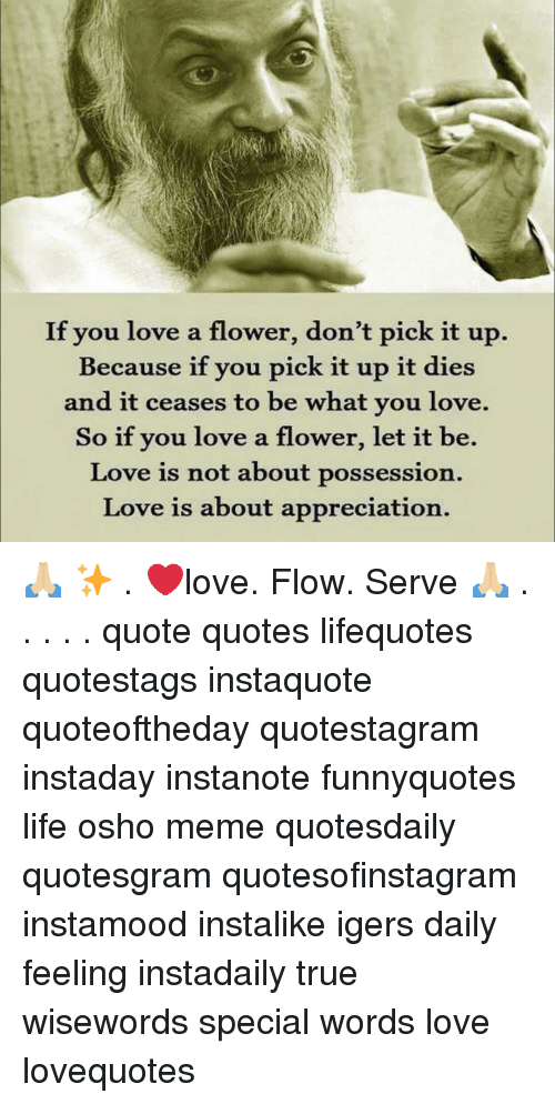 If You Love A Flower Dont Pick It Up Because If You Pick It Up It