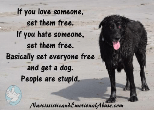 If You Love Someone Set Them Free If You Hate Someone Set Them Free