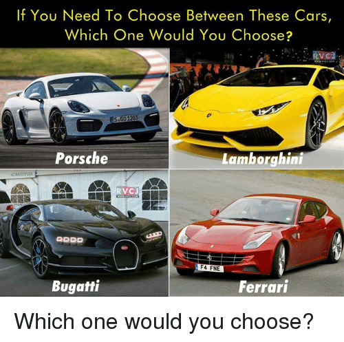 Which One Would You Choose