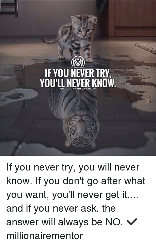 Memes, Never, and 🤖: IF YOU NEVER TRY  YOU'LL NEVER KNOW If you never try, you will never know. If you don't go after what you want, you'll never get it.... and if you never ask, the answer will always be NO. ✔️ millionairementor