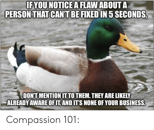 Business, Compassion, and Advice Animals: IF YOU NOTICE A FLAW ABOUT A  PERSON THAT CANTBE FIXED IN 5 SECONDS  DON'T MENTION IT TO THEM. THEY ARE LIKELY  ALREADY AWARE OF IT AND ITS NONE OF YOUR BUSINESS.  iMafin Gom Compassion 101: