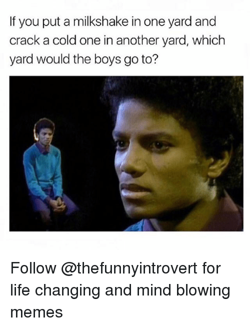 Life, Memes, and Cold: If you put a milkshake in one yard and  crack a cold one in another yard, which  yard would the boys go to? Follow @thefunnyintrovert for life changing and mind blowing memes